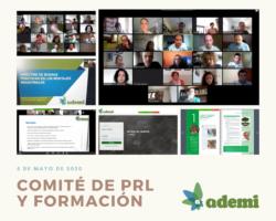 Éxito de participación en el  primer Comité virtual de PRL y Formación de ADEMI